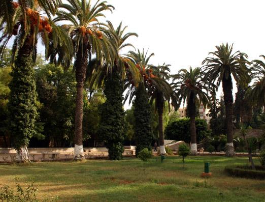 The magnificent 'Jardins de Lahboul'